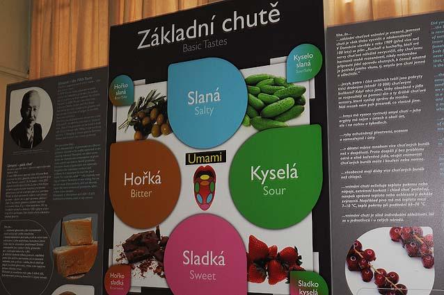 expozice muzea gastronomie - základní chutě